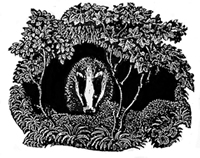 PLEASE NOTE: It is illegal to use chemicals like creosote, diesel oil, mothballs or bleach etc. to deter badgers.